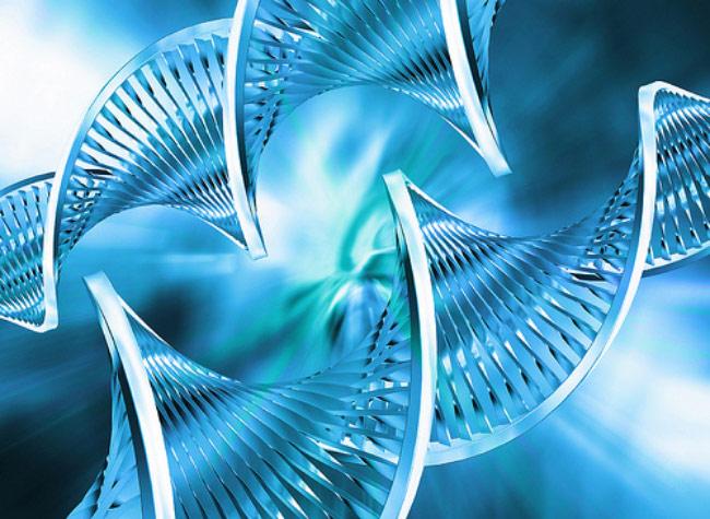 Các sản phẩm công nghệ sinh học tân tiến
