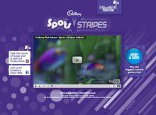 Những thiết kế web màu tím gây được ấn tượng thị giác